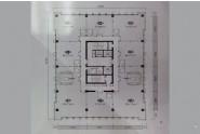 楼层户型展示图1