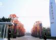 凤城凯旋公馆实景图